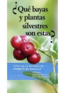 QUE BAYAS Y PLANTAS SILVESTRES SON ESTAS?