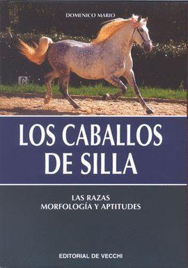 LOS CABALLOS DE SILLA