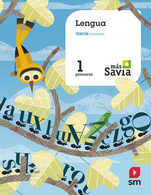 LENGUA CASTELLANA Y LITERATURA 1ºEP (BÁSICO) MÁS SAVIA (2018/SM)
