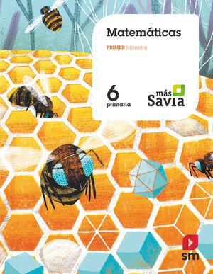 MATEMÁTICAS 6ºEP MÁS SAVIA (SM)