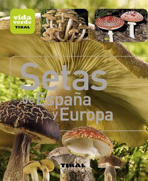 SETAS DE ESPAÑA Y EUROPA